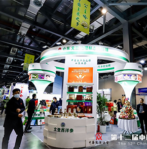 The 12th China International Trademark Brand Festival